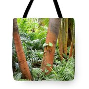 Florida Palms And Ferns Tote Bag