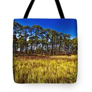 Florida Pine 3 Tote Bag