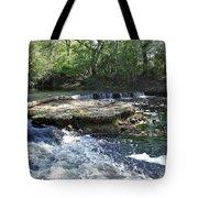 Florida Rapids Tote Bag