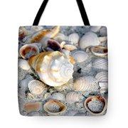 Florida Shells Tote Bag