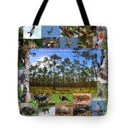 Florida Wildlife Photo Collage Tote Bag
