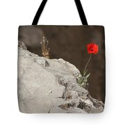 Flower By The Pool Of Bethesda - Israel Tote Bag