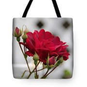 Flower In The Light Tote Bag