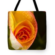 Flower Rieger Begonia 5 Tote Bag