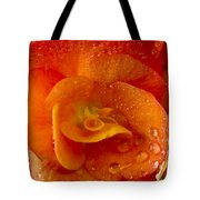Flower Rieger Begonia 6 Tote Bag