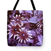 Flower Rudbeckia Fulgida In Uv Light Tote Bag by Ted Kinsman