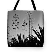 Flowering Agaves Tote Bag