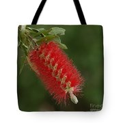 Flowers Of New Zealand 1 Tote Bag