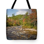 Flowing Into Autumn Tote Bag