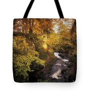 Flowing Water Through A Forest Tote Bag