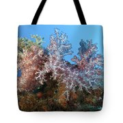 Fluffy Brown, Pink And Red Tote Bag
