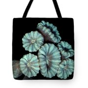 Fluorescent Coral In In White Light Tote Bag
