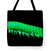 Fluorescent Millipede Tote Bag