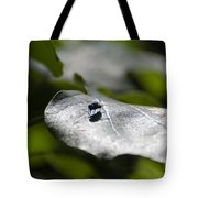 Fly On A Green Leaf Tote Bag