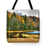 Fly Pond On Rondaxe Road II Tote Bag