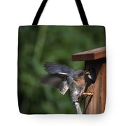 Fly Through Tote Bag
