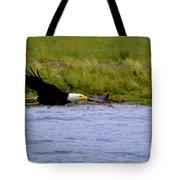 Flying Bald Eagle Tote Bag
