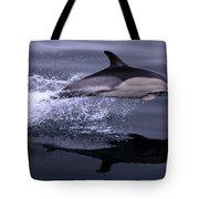 Flying Porpoise Tote Bag