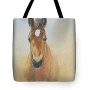 Foal Study Tote Bag