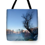 Foggy Road With A Tree Tote Bag