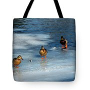Follow The Leader Duck Style Tote Bag