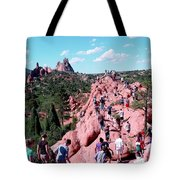 Follower's Migration Tote Bag