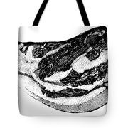 Food: Beef Tote Bag