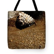 Fools Gold And Pine Cone Tote Bag