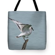 Foot Up Wing Test Tote Bag