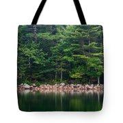 Forest At Jordan Pond Acadia Tote Bag