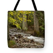 Forest Brook Tote Bag
