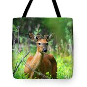 Forest Buck Tote Bag