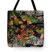 Forest Color Tote Bag