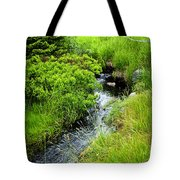 Forest Creek In Newfoundland Tote Bag