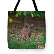 Forest Edge 7365 1754 Tote Bag