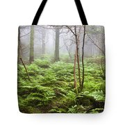 Forest Ferns On A Foggy Morning Tote Bag