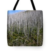 Forest Fire Sticks-3 Tote Bag