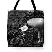 Forest Floor 1 Tote Bag by Nathan Larson