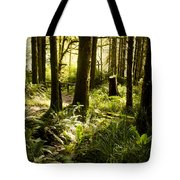 Forest For The Trees Tote Bag