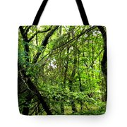 Forest In Denmark Tote Bag