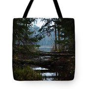 Forest Lake Tote Bag