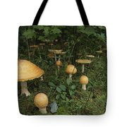 Forest Mushrooms Sprout Tote Bag