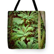 Forest Of Ferns Tote Bag
