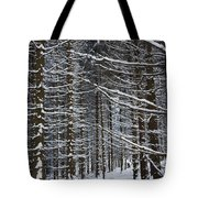 Forest Of Marburg In Winter Tote Bag
