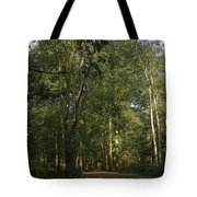 Forest Path 1 Tote Bag