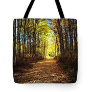Forest Path In Autumn Tote Bag