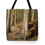 Forest Pathway, Whistler, British Tote Bag