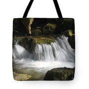 Forest Stream 2a Tote Bag
