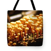 Forest Trifles Tote Bag