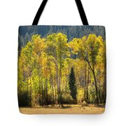 Forested Light Tote Bag